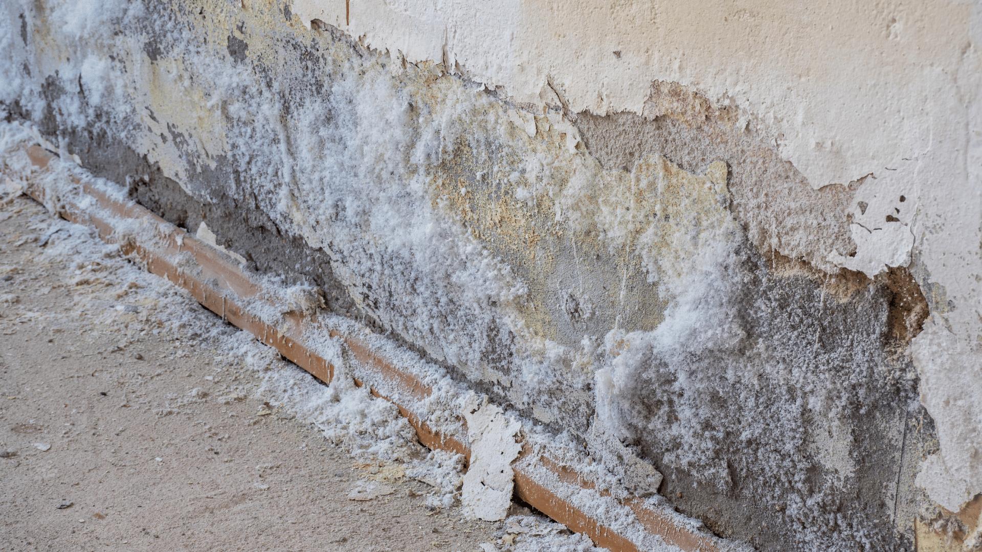 Salétromos fal szigetelése házilag