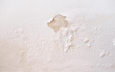 Vizes fal az otthonában? Mitől lehetséges?